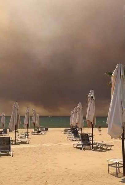 Турция охвачена лесными пожарами